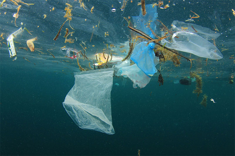 New Zealand Needs to Tax Plastic Bags
