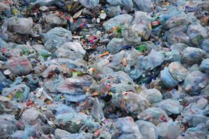 A Plastic Bag Rebuttal Letter