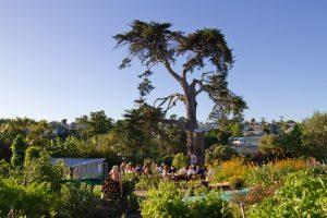 Kelmarna Gardens